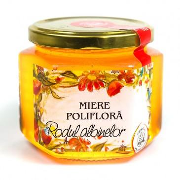 Miere poliflora - Rodul Albinelor - Prisaca Transilvania